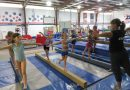 Why Choose Gymnastics?
