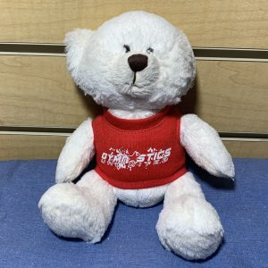 gymnastics unlimited teddy bear