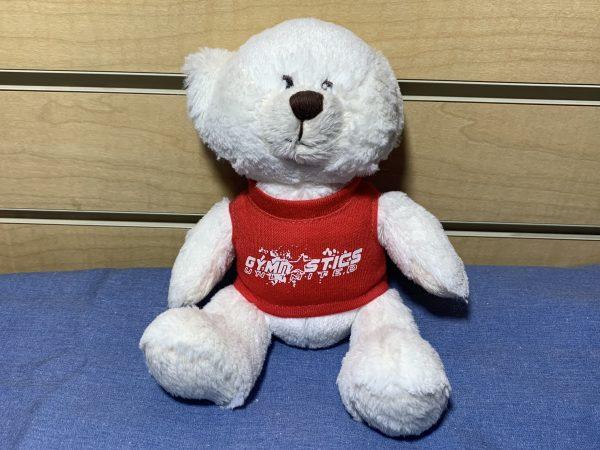 gymnastics unlimited teddy bear