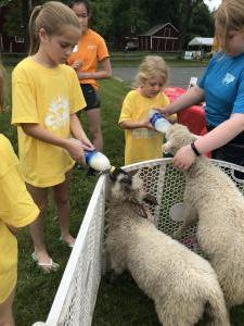 Bivona Animal Farm