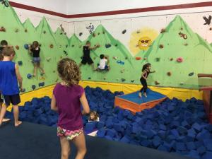 Rock Wall & Foam Pit