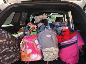 Packed Bags for Comfort Cases (2018)